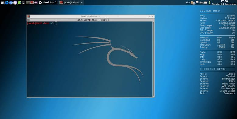 Link Full Download Kali Linux 2019.2 32 Bit and 64 Bit ISO File